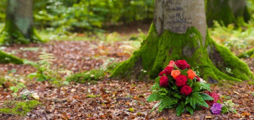 Naturbestattung mit roten Rosen an den Wurzeln eines alten Baumes im Wald.