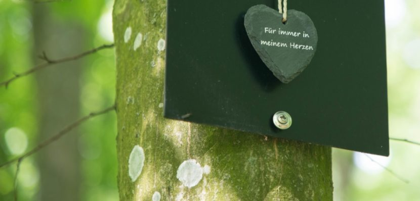 Plakette an einem Baum im Friedwald, der für eine Naturbestattung genutzt wurde.