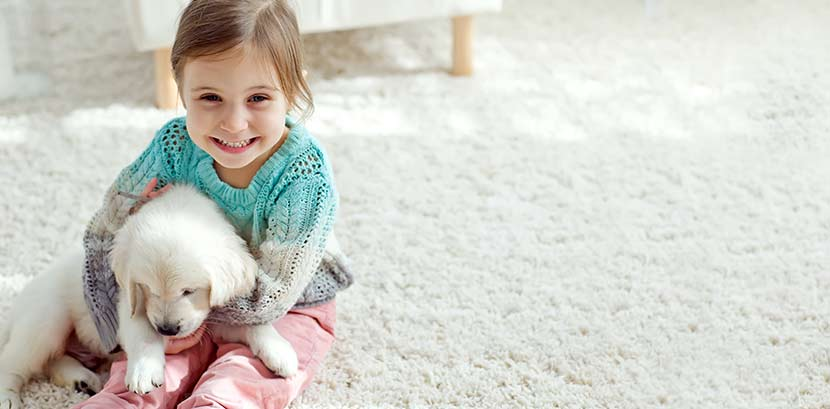 Teppichboden verlegen: Ein kleines Mädchen spielt mit einem Welpen auf einem Teppichboden.