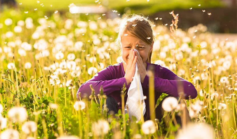 Kind niest im Feld wegen Pollen