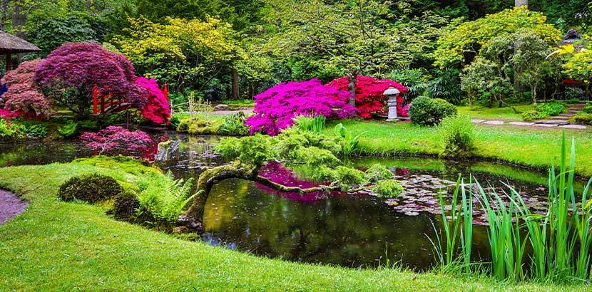 Teich anlegen und Gartenteich planen: Ein wunderschöner Gartenteich im japanischen Stil.