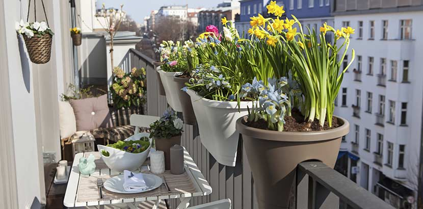 Balkon gestalten Balkonblumen