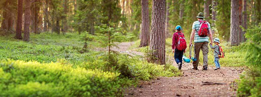 Wandern mit Kindern in Oberösterreich