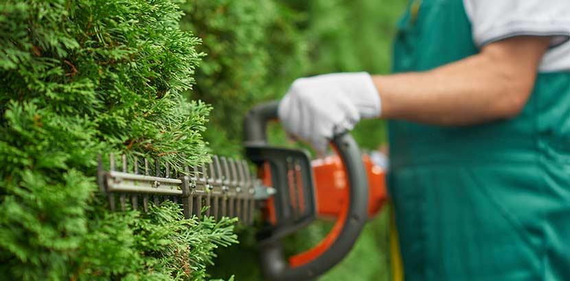 Gartenpflege Wien