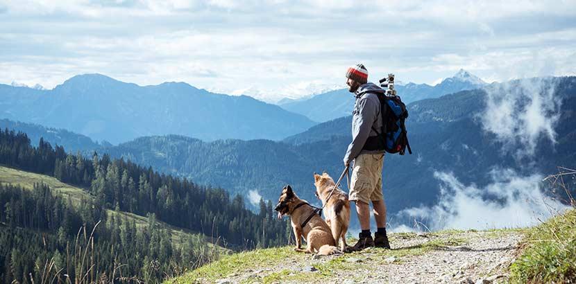 Urlaub in Österreich mit Hund