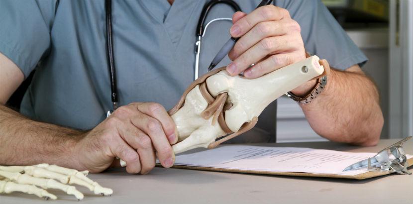 Orthopäde Salzburg: Ein Orthopäde mit einer Knieplastik in der Hand.