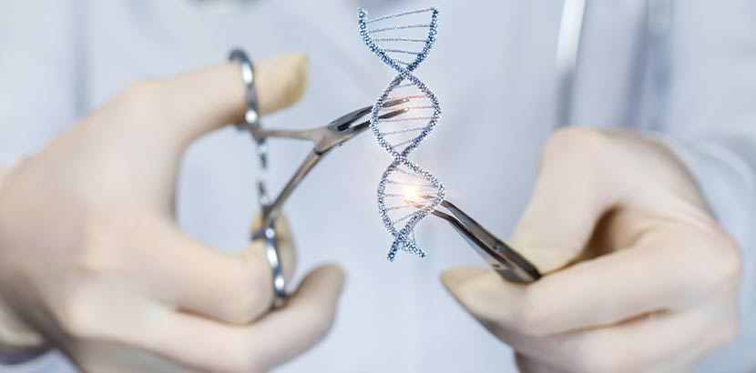 DNA, die von zwei Händen in sterilen Handschuhen auseinandergenommen wird. Welcher Arzt wofür zuständig?