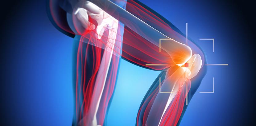 Stammzellentherapie zur Knorpelregeneration