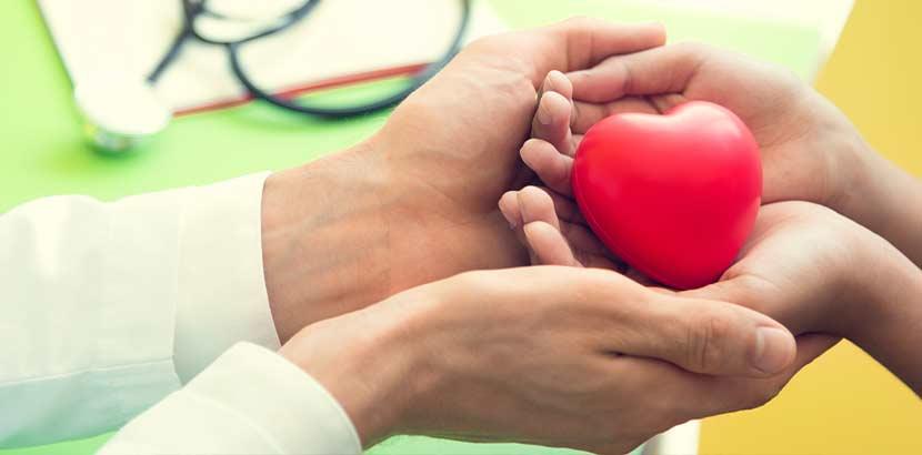 Arzthände, die Kinderhände halten, die ein rotes Herz halten. Kinderkardiologe Wien.