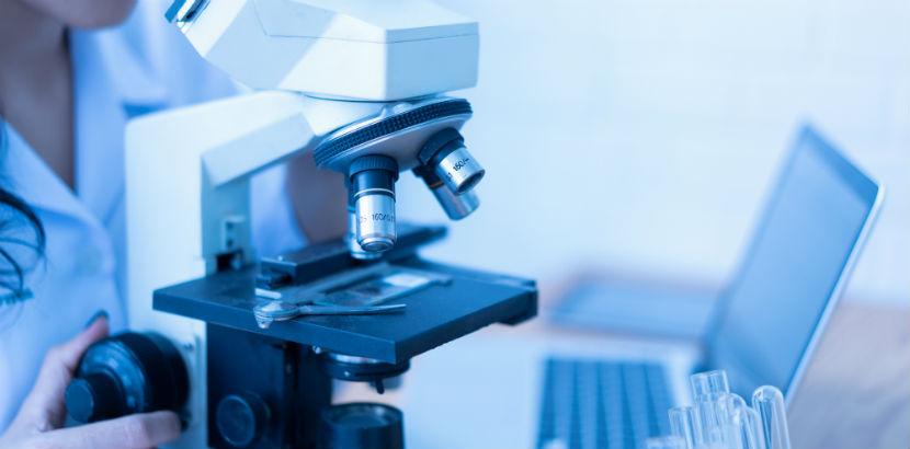 Gesundenuntersuchung: ein medizinisches Mikroskop.