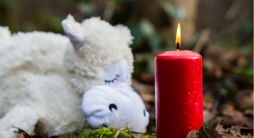 Sternenkinder: Kerze und Stofftier auf gefallenem Laub.