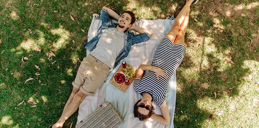 Date Ideen Wien: Picknick im Park