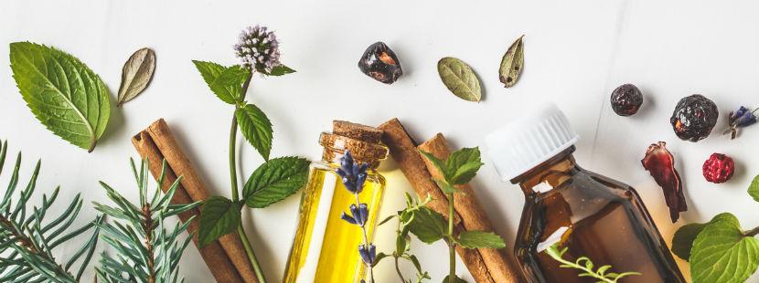 Massage Graz: verschiedene Kräuter und Öle