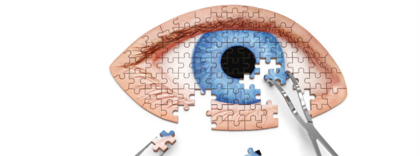 Auge als Puzzle mit Werkzeug.