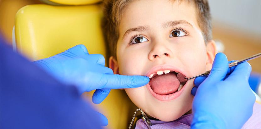 Ein Junge zeigt seine Milchzähne und wird untersucht.