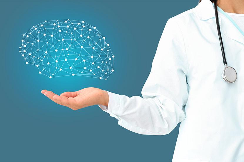 Ärztin mit Modell des Gehirns.
