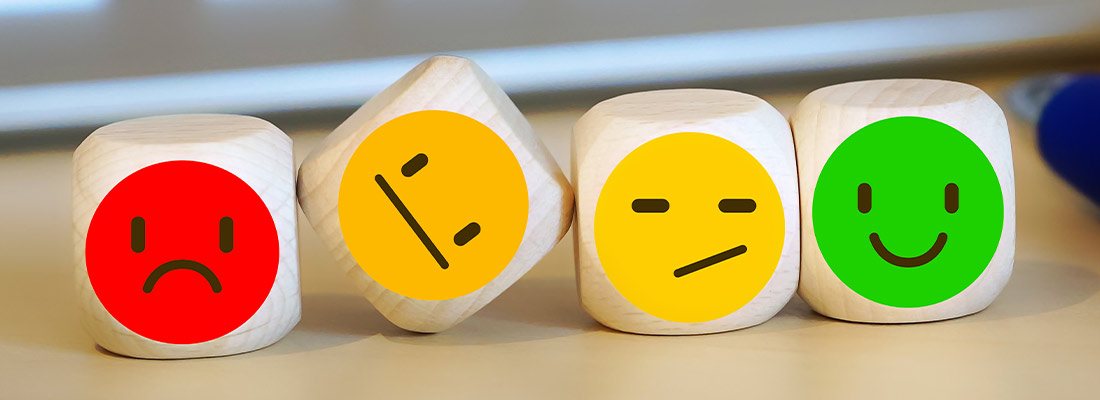 Net Promoter Score nach Fred Reichheld als Customer Service Tool.