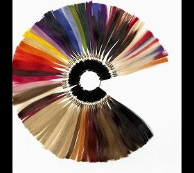 Typ- und Farbberatung