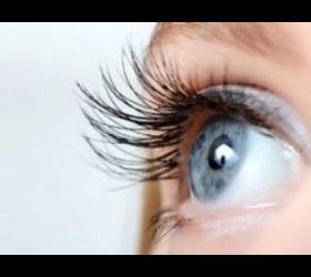Wimpern- Augebrauenfärben