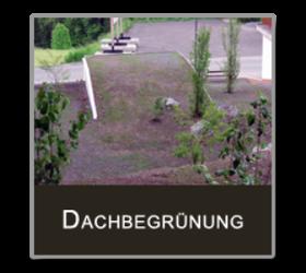Dachbegrünung, Jäger GmbH Dachdecker und Spenglerei