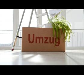 Umzug, Umzüge, Möbeltransport,  Box ULBG - Umzug-Logistik-GmbH