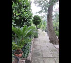 Biopflanzen, Blumenwiese, Naturwiese, Moosvernichtung, Strauchpflege, Pflanzflächenpflege, Findlinge