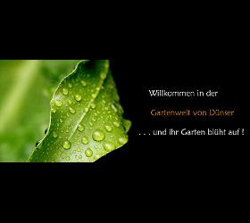 GARTEN DÜNSER Rasen,  Obst und Beeren, Hecke,