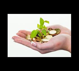 Lebensversicherung/ Kapitalversicherung