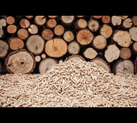 Biomasse