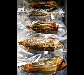 Karpfen-Roller - Räucherfisch