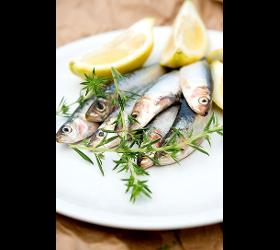 Fotograf Fotowerk Lampelmayer Foodfotografie
