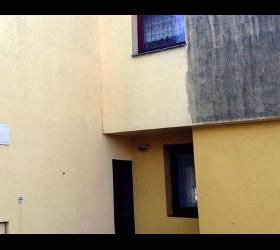 Algen auf der Fassade - Fassadenreinigung