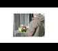 Blumen senden zu Valentin