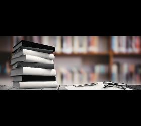Bücher - Bibliothek Domino