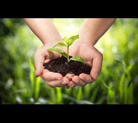 Ökologische Planungen
